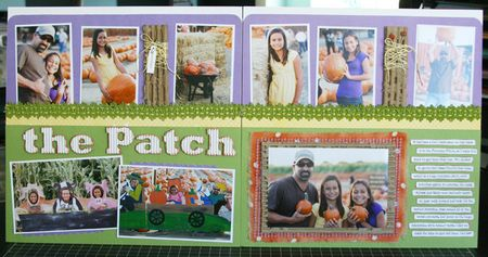 The_patch_spread_redo
