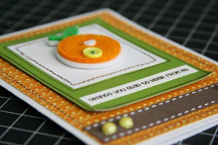 Pebbles_OrangeYellowFruit_orange2