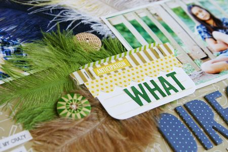 LauraVegas_Feathers_WhatDirection_detail3