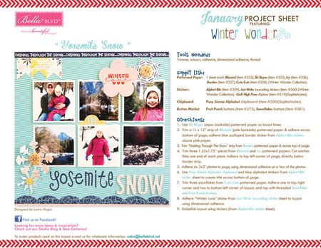 WINTER WONDER PROJECT SHEET 2013