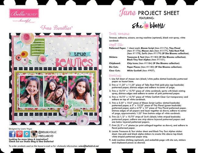 JuneProjectSheet_blog