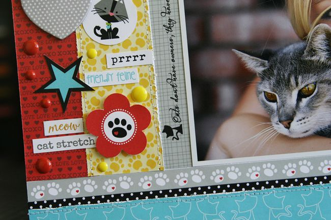 LauraVegas_Whiskers_detail5